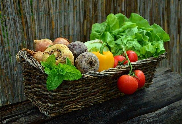 Investir dans l'agroalimentaire : est-ce vraiment une bonne idée?