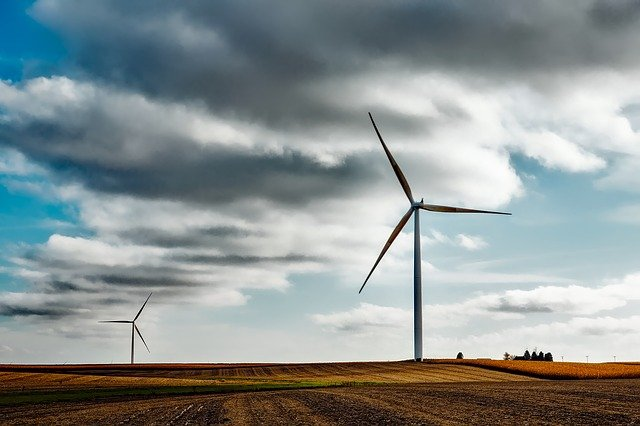 Quelques idées de business écologique